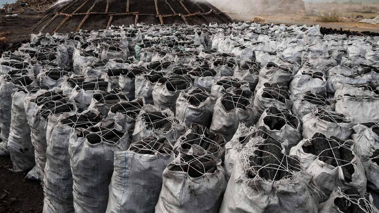 charcoal from nigeria