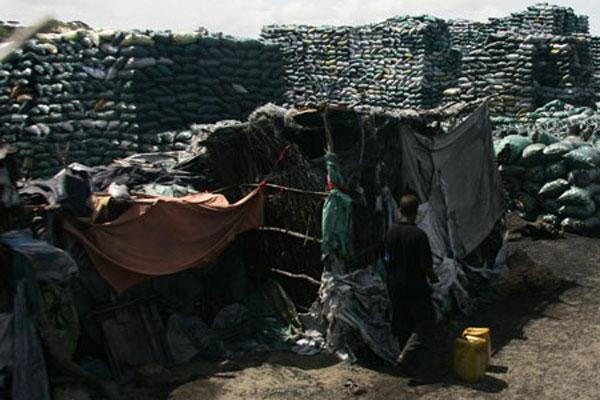 somalian charcoal trade