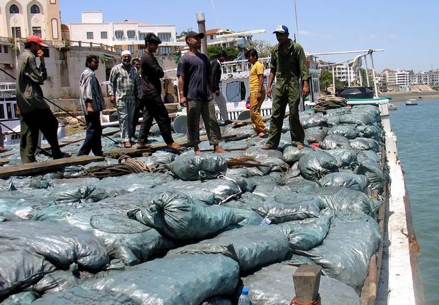 charcoal exports somalia